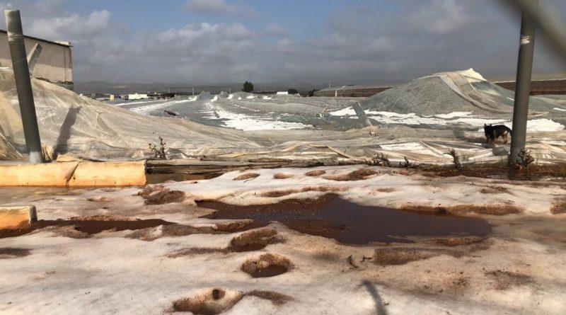 El GPP reclama al Gobierno que estudie la declaración de zona catastrófica en los municipios afectados por la borrasca Gloria